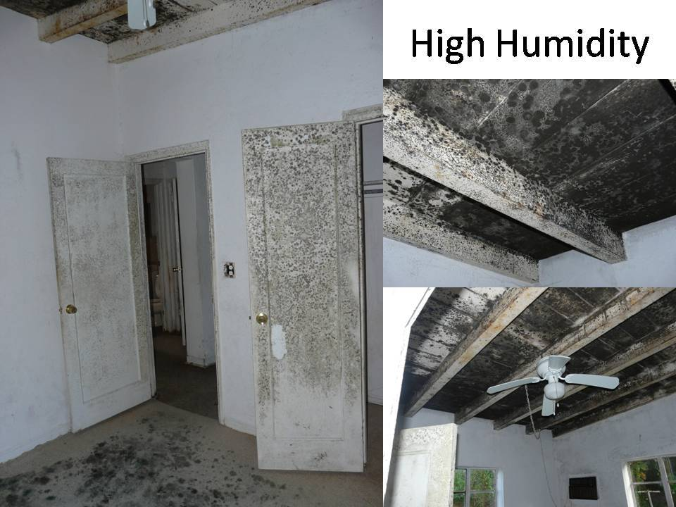 High Humidity In House With Air Conditioning 28 Images