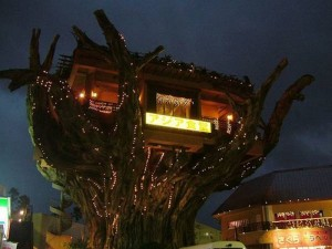 Treehouse Restaurant in Okinawa, Japan2